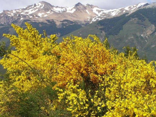 Josan Aventurs Patagonia (6)