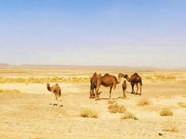 Marruecos senderismo Josanaventurs (13)