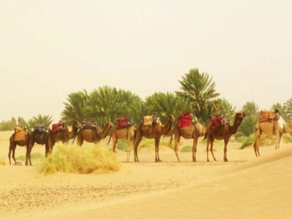 Marruecos senderismo Josanaventurs (23)